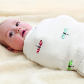 baby in aden anais easy swaddle