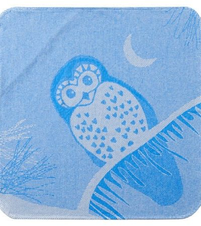 Breganwood Organics Blue Owl printed hooded towelO