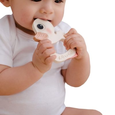 Eco friendly duck teether