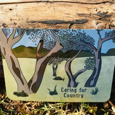Aboriginal Educational Cards